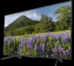Televizor  KD-65XF7096 + extra reducere 10%