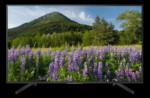 TV Sony KD-55XF7005