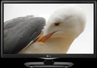 TVs TV LG 28LF450U