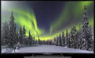 Televizoare TV Sony KD-65S8505C