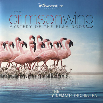 VINIL Universal Records Cinematic Orchestra - The Crimson Wing - Mystery Of The Flamingos