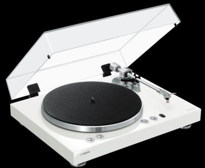 Pickup Yamaha TT-N503 (Vinyl 500)