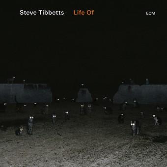 CD ECM Records Steve Tibbetts: Life Of