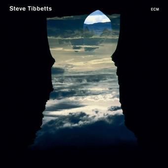 CD ECM Records Steve Tibbetts: Natural Causes