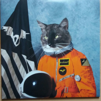 VINIL Universal Records Klaxons ‎- Surfing The Void