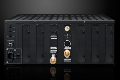 Amplificator Emotiva XPA-DR1 Monoblock Amplifier