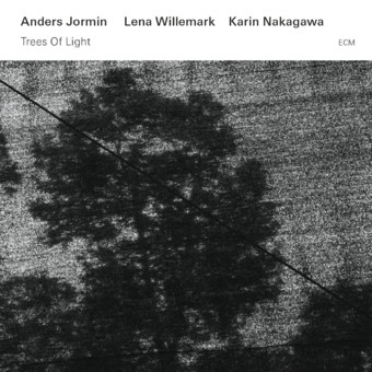 CD ECM Records Anders Jormin: Trees Of Light
