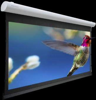 Ecran proiectie Projecta TENSIONED ELPRO CONCEPT RF - 16:9, panza HCCV + telecomanda RF