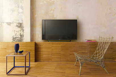 TV Sony 40RD450