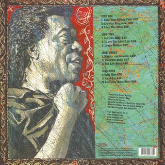 VINIL Universal Records Buddy Guy - Blues Singer