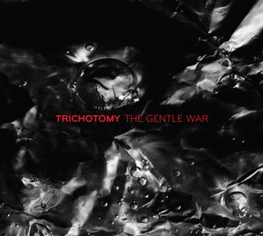 CD Naim Trichotomy: The Gentle War