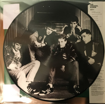VINIL Universal Records New Kids On The Block (NKOTB) - Hangin Tough (30th Anniversary Picture Disc Edition)