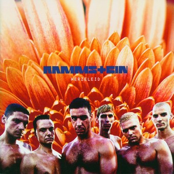 VINIL Universal Records Rammstein - Herzeleid
