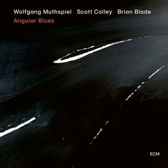 VINIL ECM Records Wolfgang Muthspiel - Angular Blues