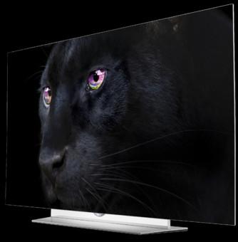 TV LG 55EF950V