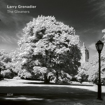 VINIL ECM Records Larry Grenadier: The Gleaners