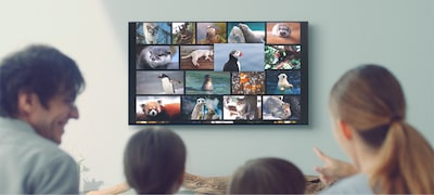 Imagine cu AF9 | Seria Master | OLED | Ultra HD 4K | Interval dinamic ridicat (HDR) | Televizor inteligent (Android TV)