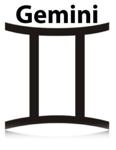 dual_gemini