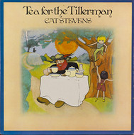 Viniluri VINIL ProJect Cat Stevens: Tea For The TillermanVINIL ProJect Cat Stevens: Tea For The Tillerman