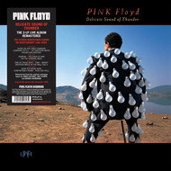 Muzica VINIL Universal Records Pink Floyd - Delicate Sound Of ThunderVINIL Universal Records Pink Floyd - Delicate Sound Of Thunder
