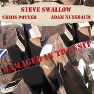 Muzica CD CD ECM Records Steve Swallow: Damaged In TransitCD ECM Records Steve Swallow: Damaged In Transit