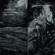 Muzica CD CD ECM Records FLY TRIO: Year of the SnakeCD ECM Records FLY TRIO: Year of the Snake