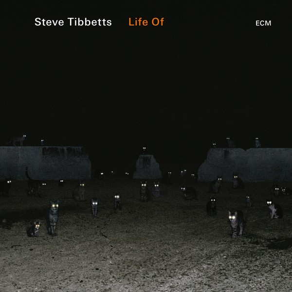 Muzica CD CD ECM Records Steve Tibbetts: Life OfCD ECM Records Steve Tibbetts: Life Of