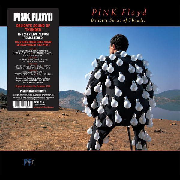 Viniluri VINIL Universal Records Pink Floyd - Delicate Sound Of ThunderVINIL Universal Records Pink Floyd - Delicate Sound Of Thunder
