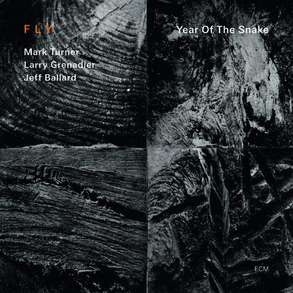 Muzica CD CD ECM Records Fly Trio: Year of the SnakeCD ECM Records Fly Trio: Year of the Snake