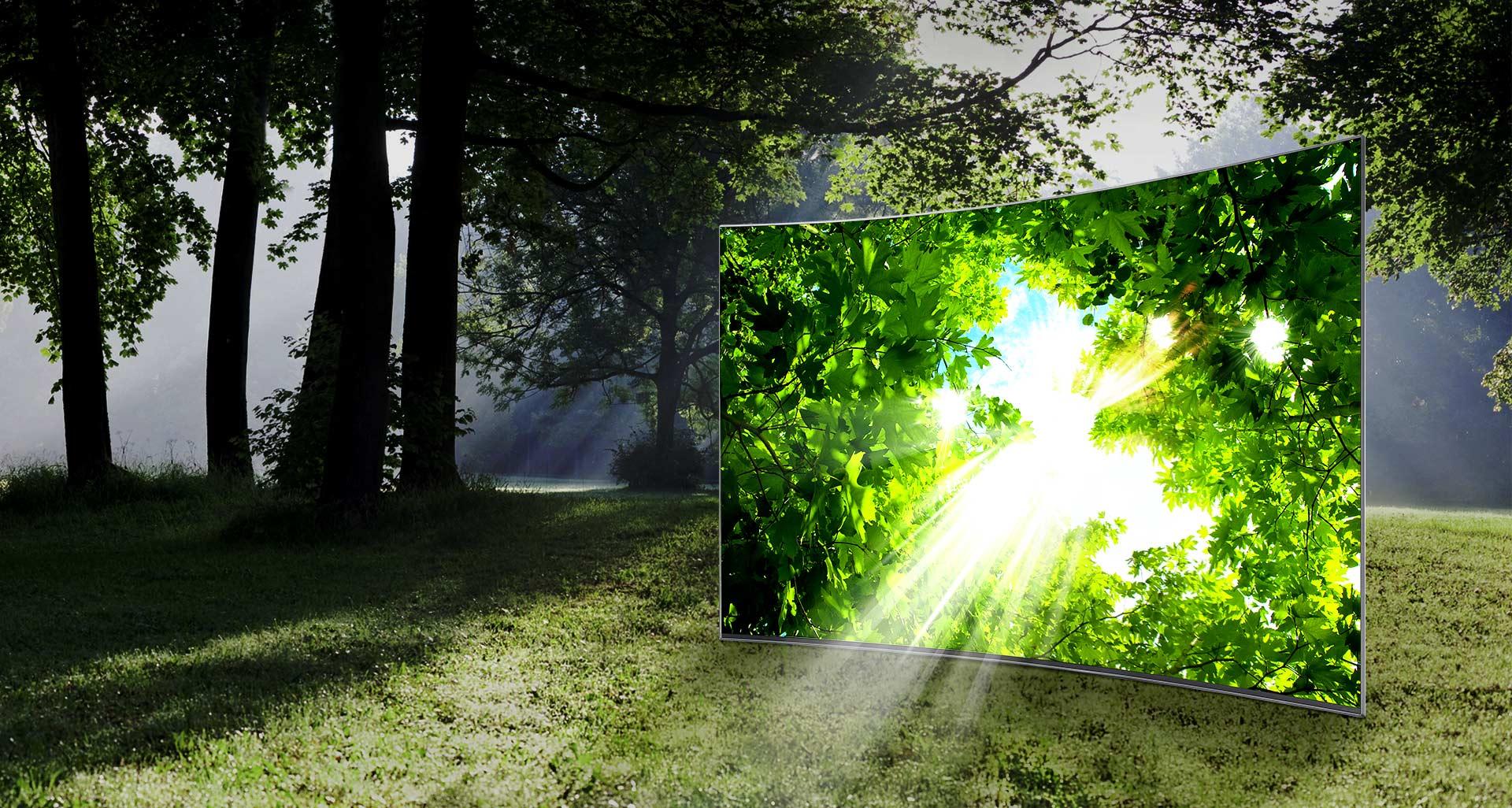 Imagini de o luminozitate incredibilă