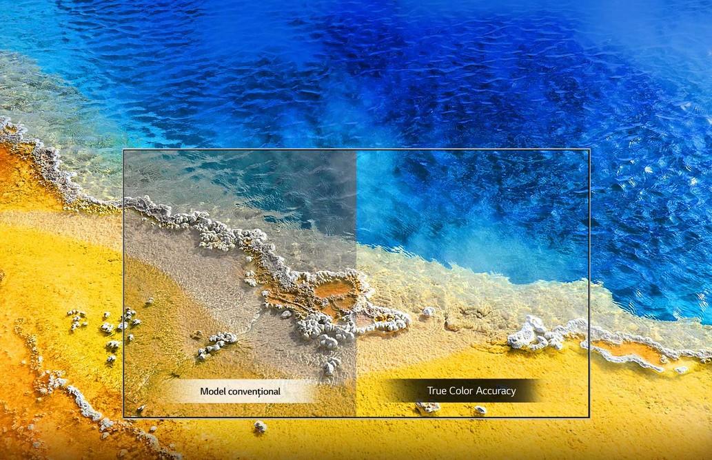 TV-UHD-UM74-B-05-True-Color-Accuracy-Desktop_V1