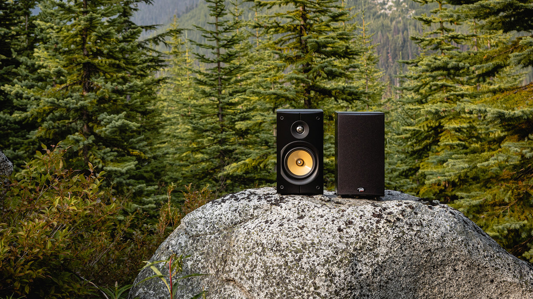 Image-X-Bookshelf-speakers