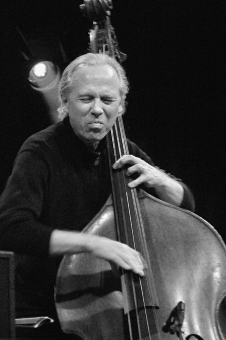 Image result for marc johnson bass