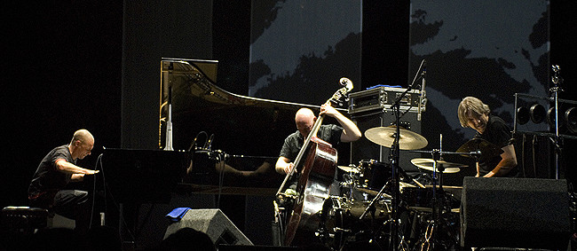 Image result for esbjorn svensson trio