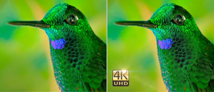 4K UHD Resolution