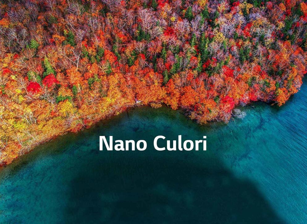 TV-NanoCell-65-55-49-SM90-02-Nano-Color-Desktop_V02
